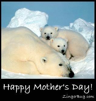 mothers_day_polar_bears